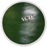 Insect Round Beach Towel