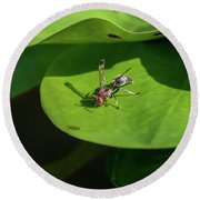 Insect On Lotus Leaf Round Beach Towel