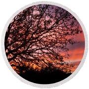 Intense Sunset Tree Silhouette Round Beach Towel