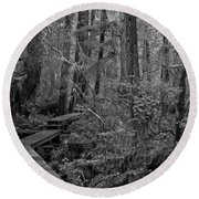 Into A Magical World Black And White Round Beach Towel