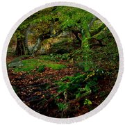 Into The Forest Of Fontainebleau Round Beach Towel