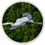 Into The Mangroves Round Beach Towel