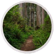 Into The Redwoods Round Beach Towel