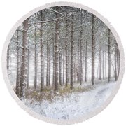 Into The Woods 3 - Winter At Retzer Nature Center  Round Beach Towel