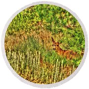 Invisible Nature One Surreal C Round Beach Towel