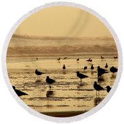 Iquique Chile Seagulls  Round Beach Towel