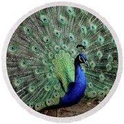 Iridescent Blue-green Peacock Round Beach Towel