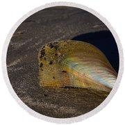 Iridescent Pen Shell  Round Beach Towel