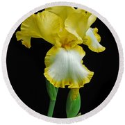 Iris 4 Round Beach Towel