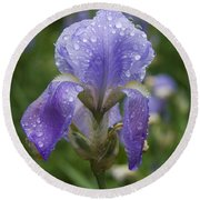 Iris After Rain Round Beach Towel