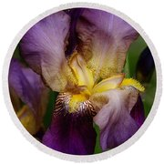 Iris Beauty Round Beach Towel