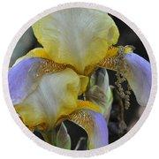 Iris Beauty Round Beach Towel