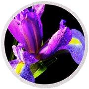 Iris Bloom One Round Beach Towel