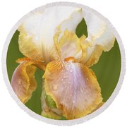 Iris Canary Frills Round Beach Towel