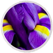 Iris Detail 2 Round Beach Towel