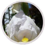 Iris Flower Art Print Canvas Friendship Park Mercy Medical Center Round Beach Towel