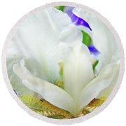 Iris Flower Art Print White Blue Purple Irises Baslee Troutman Round Beach Towel