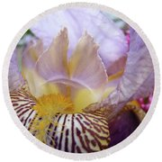 Iris Flower Art Purple Lavender Irises Giclee Prints Baslee Troutman  Round Beach Towel