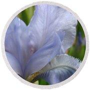 Iris Flower Blue 2 Irises Botanical Garden Art Prints Baslee Troutman Round Beach Towel