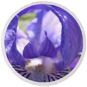 Iris Flower Purple Irises Floral Botanical Art Prints Macro Close Up Round Beach Towel