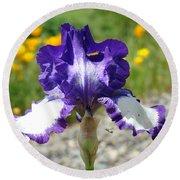 Iris Flower Purple White Irises Nature Landscape Giclee Art Prints Baslee Troutman Round Beach Towel