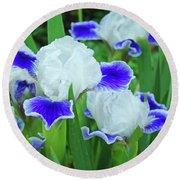 Iris Flowers Art Prints Blue White Irises Floral Baslee Troutman Round Beach Towel