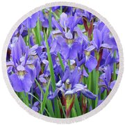 Iris Flowers Artwork Purple Irises 9 Botanical Garden Floral Art Baslee Troutman Round Beach Towel