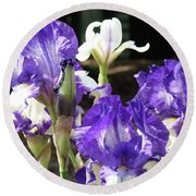 Iris Flowers Floral Art Prints Purple Irises Baslee Troutman Round Beach Towel
