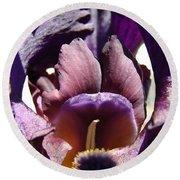 Iris Flowers Purple Irises Artwork Prints Framed Canvas Cards Nature Gardens Round Beach Towel