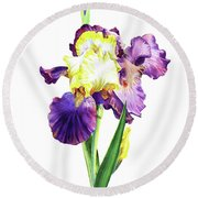 Iris Flowers Watercolor  Round Beach Towel