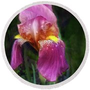 Iris In The Pink Round Beach Towel