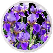 Iris Splendor Round Beach Towel
