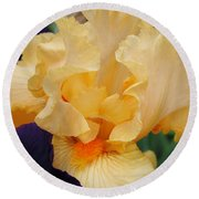 Irises Art Prints Peach Iris Flowers Artwork Floral Botanical Art Baslee Troutman Round Beach Towel