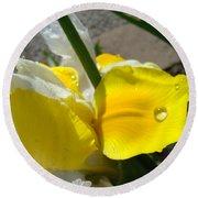 Irises Artwork Iris Flowers Art Prints Flower Rain Drops Floral Botanical Art Baslee Troutman Round Beach Towel