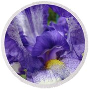 Irises Artwork Purple Iris Flowers Art Prints Canvas Baslee Troutman Round Beach Towel