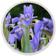 Irises Flowers Art Prints Blue Purple Iris Floral Baslee Troutman Round Beach Towel
