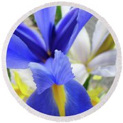 Irises Flowers Artwork Blue Purple Iris Flowers 1 Botanical Floral Garden Baslee Troutman Round Beach Towel