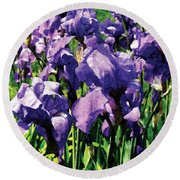 Irises Princess Royal Smith Round Beach Towel
