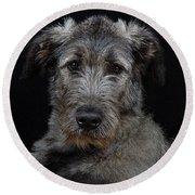 Irish Wolfhound Droc Vi Round Beach Towel