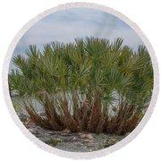 Island Palms Round Beach Towel
