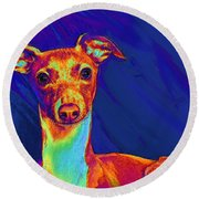 Italian Greyhound  Round Beach Towel by Jane Schnetlage