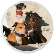 Italian Greyhounds Round Beach Towel