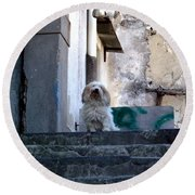 Italy's Capri Doggie Round Beach Towel