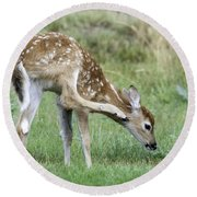Itchy Fawn Round Beach Towel