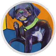 Itchy Round Beach Towel