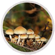 It's A Small World Mushrooms Round Beach Towel by Jennie Marie Schell