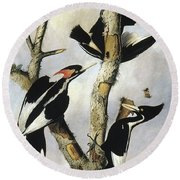 Ivory-billed Woodpeckers Round Beach Towel