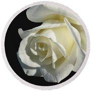 Ivory Rose Flower On Black Round Beach Towel
