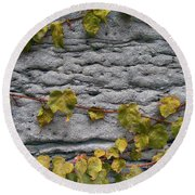 Ivy And Ancient Wall In Old Montreal Hd Photography Round Beach Towel