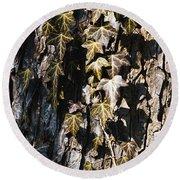 Ivy Leaves Grunge Tone Round Beach Towel